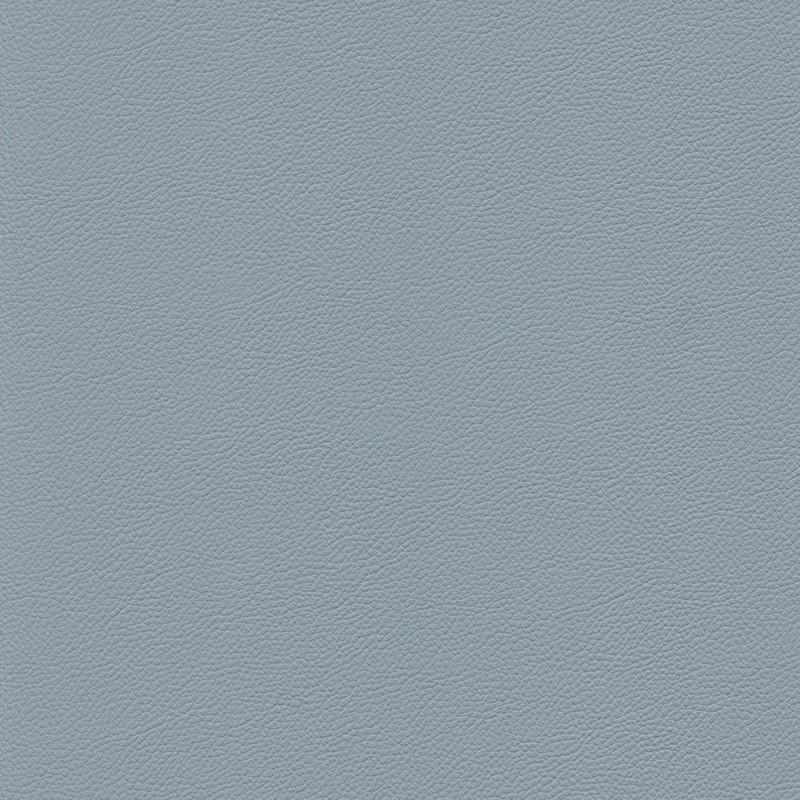 Gemini-blue_fog
