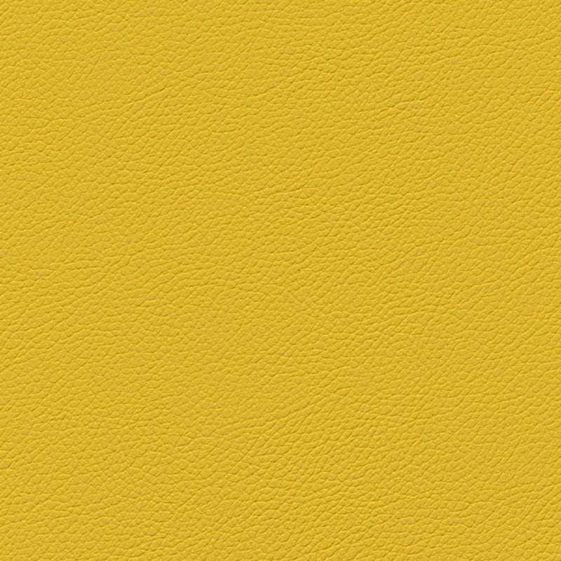Gemini-yellow